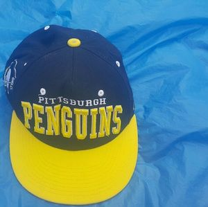 ZEPHYR THE HAT PITTSBURGH PENGUINS HOCKEY TEAM HAT